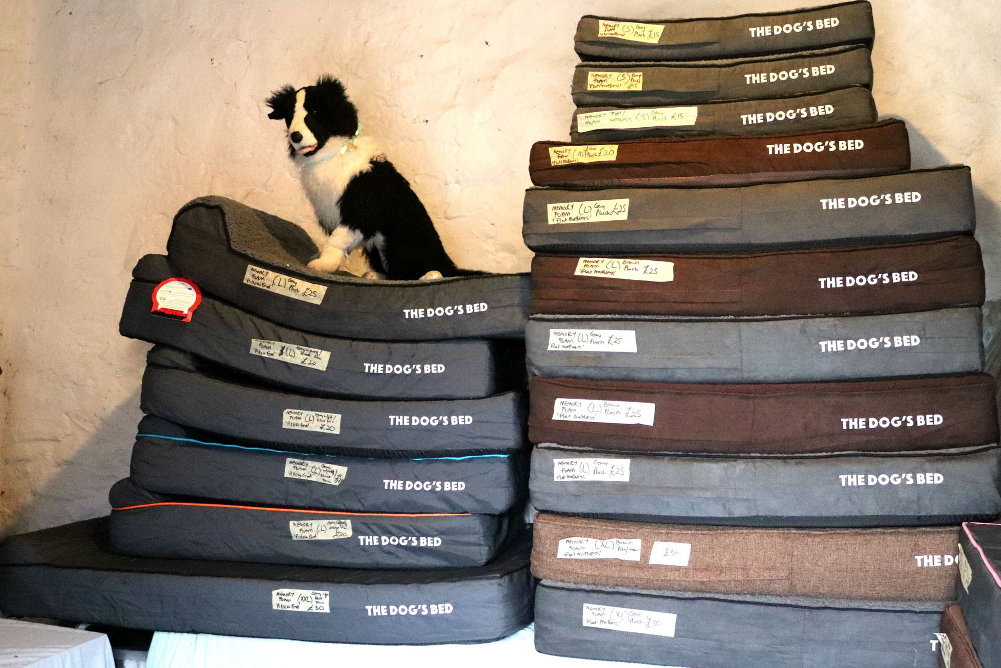 Stack of dog beds